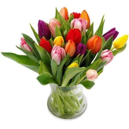 Bukiet 15 kolorowych tulipanów