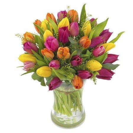 Bukiet 35 Tulipanów Kolorowych